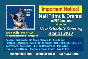 All About Pets New Schedule4